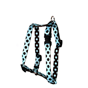 Blue and Brown Polka Dot Roman H Harness
