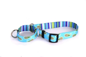 Blue Paisley Martingale Collar