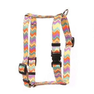 Chevy Stripe Multi Roman H Harness