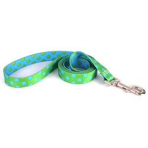 Green and Blue Polka Dot Lead