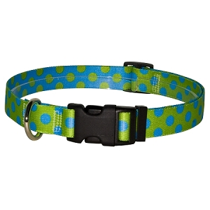 Green and Blue Polka Dot Standard Collar