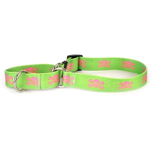 Green and Pink Skulls Martingale Collar