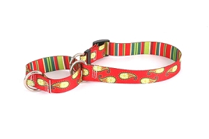 Holiday Paisley Martingale Collar
