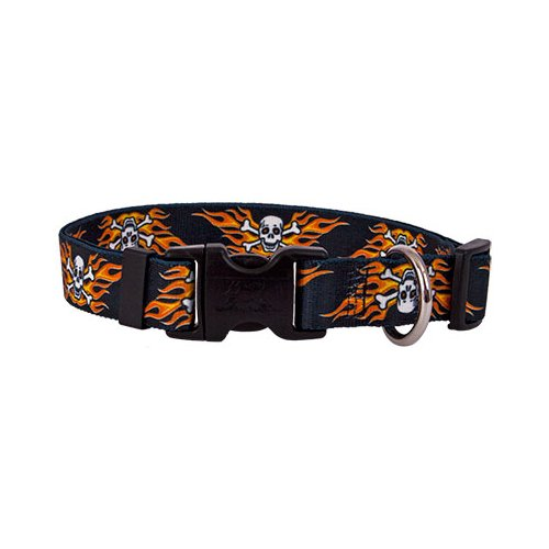 Flaming Skulls Standard Collar