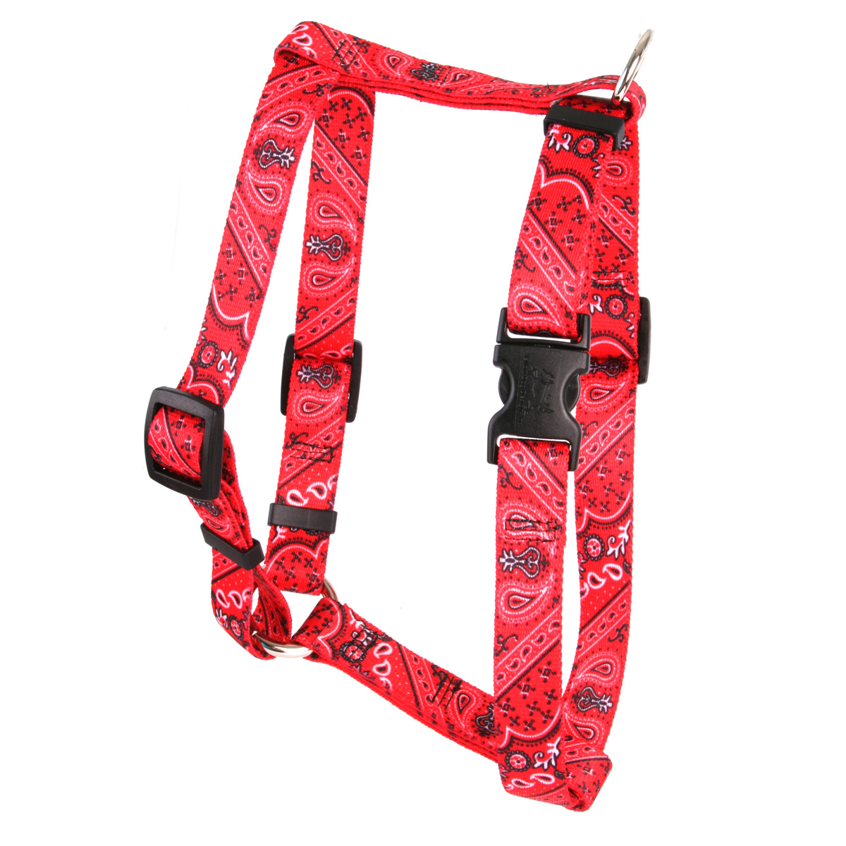 Bandana Red Roman H Harness