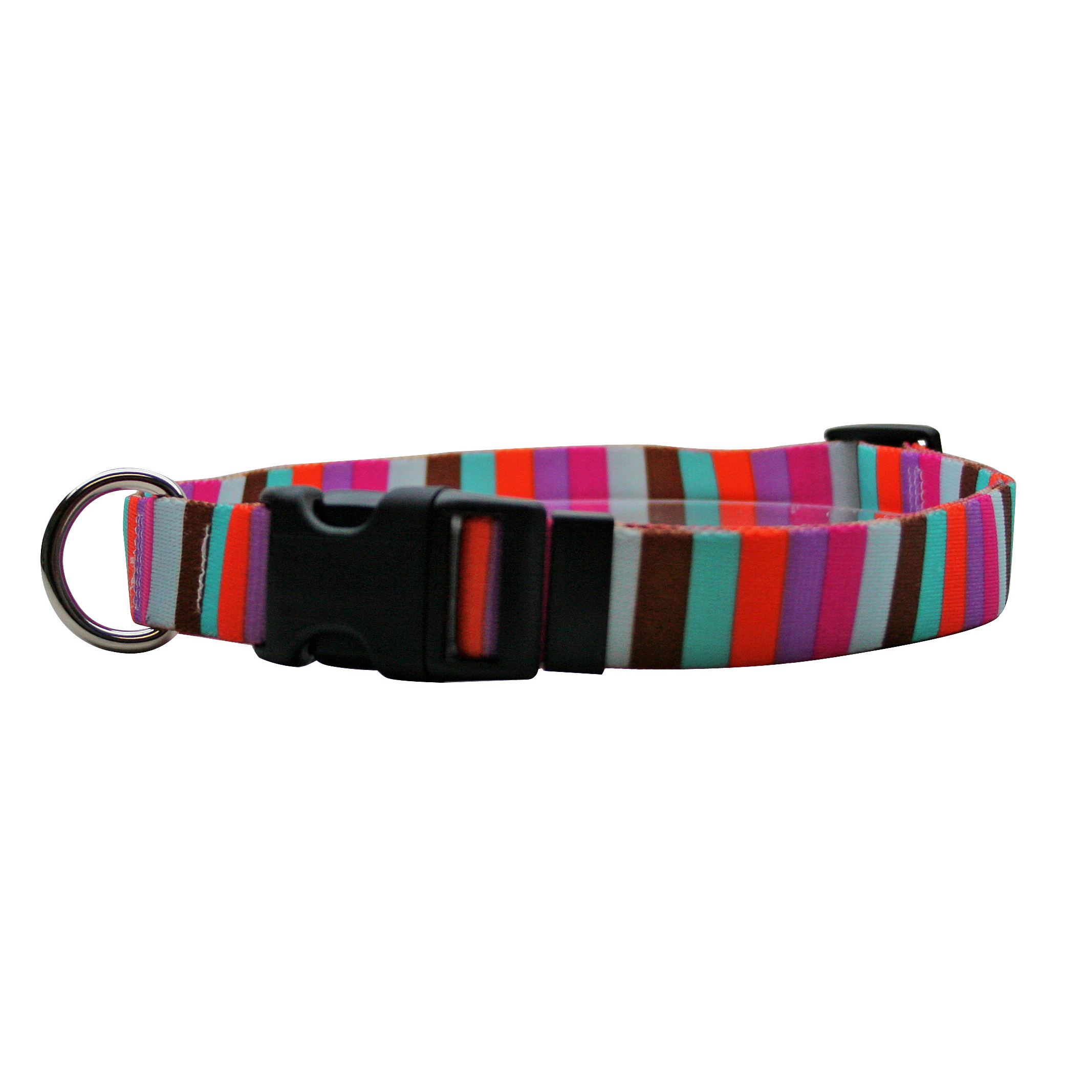 Multi-Stripe Standard Collar
