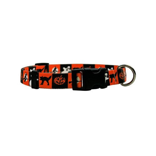 Pumpkin Patch Standard Collar