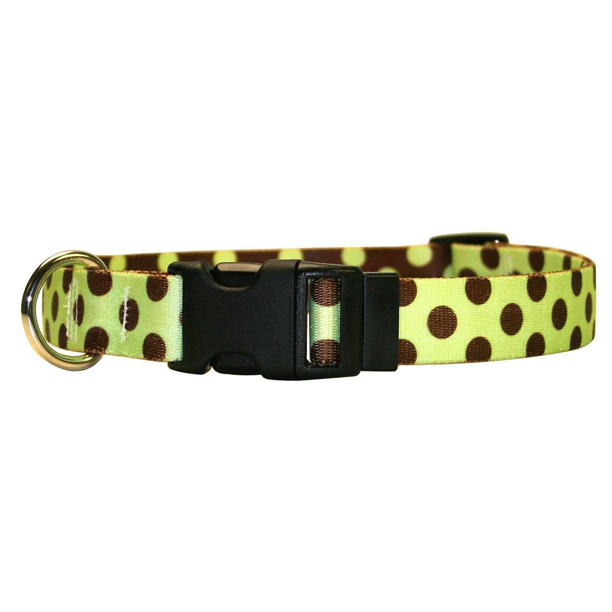 Green and Brown Polka Dot Standard Collar