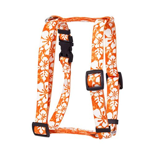 Island Floral Orange Roman H Harness