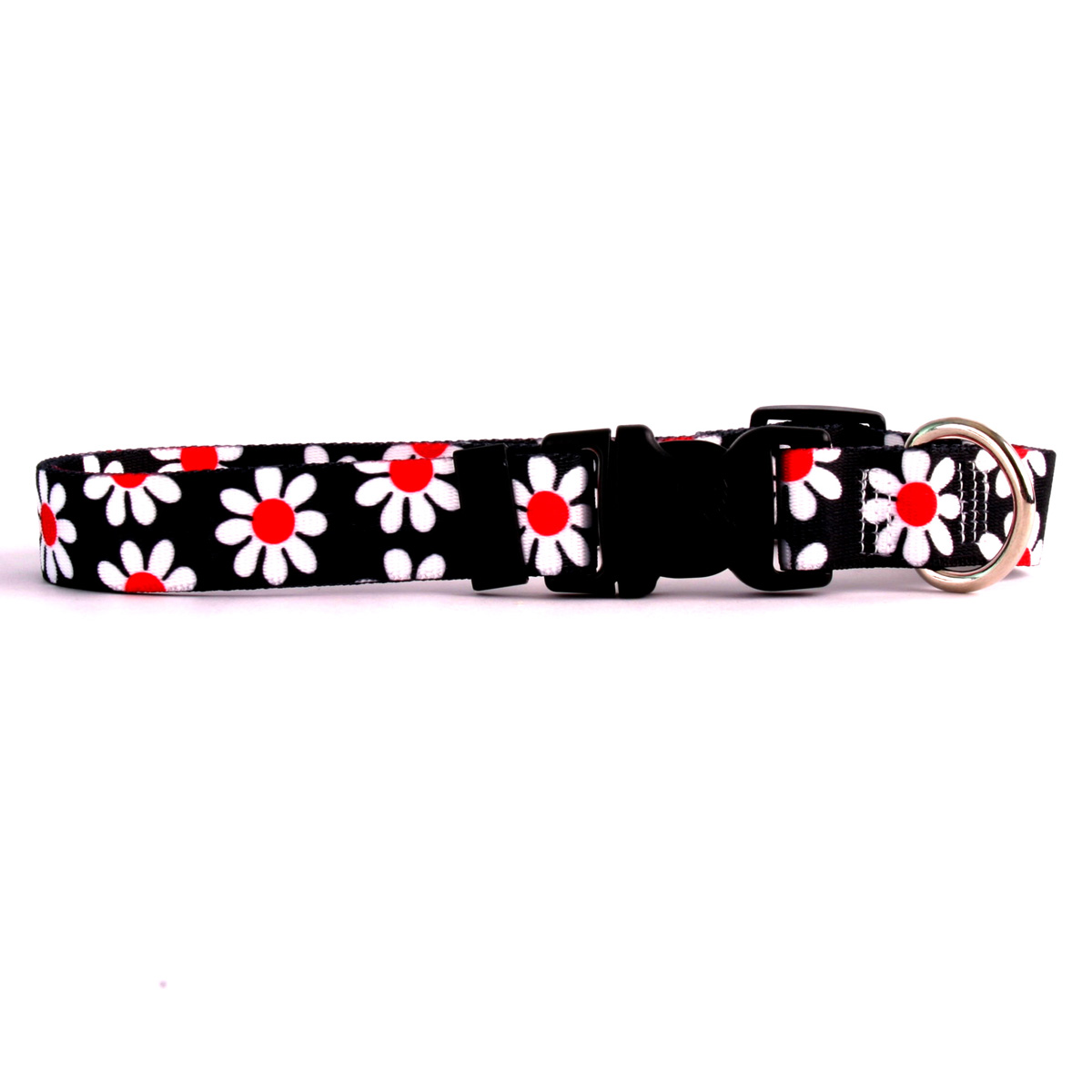 Black Daisy Standard Collar