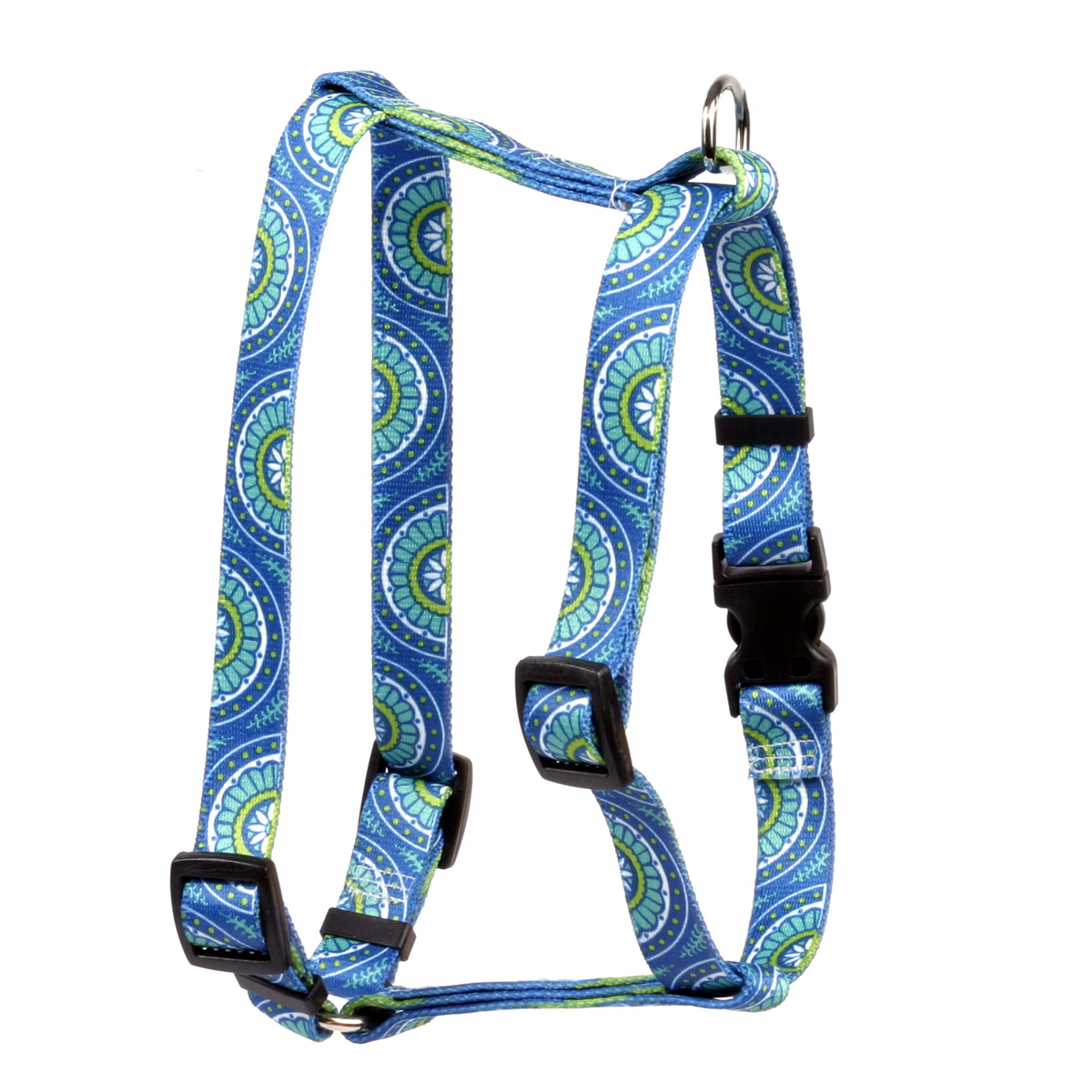 Radiance Blue Roman H Harness