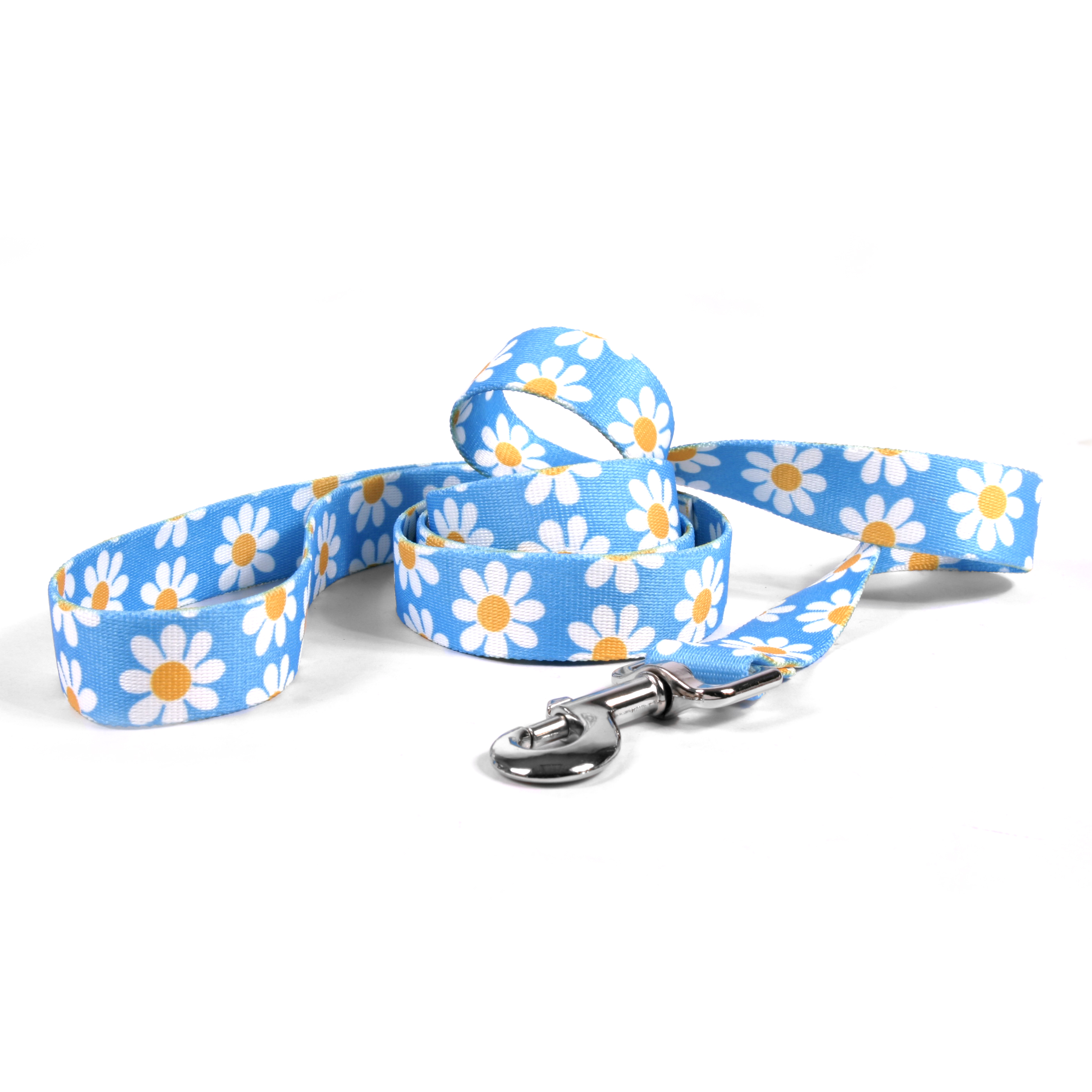 Blue Daisy Lead