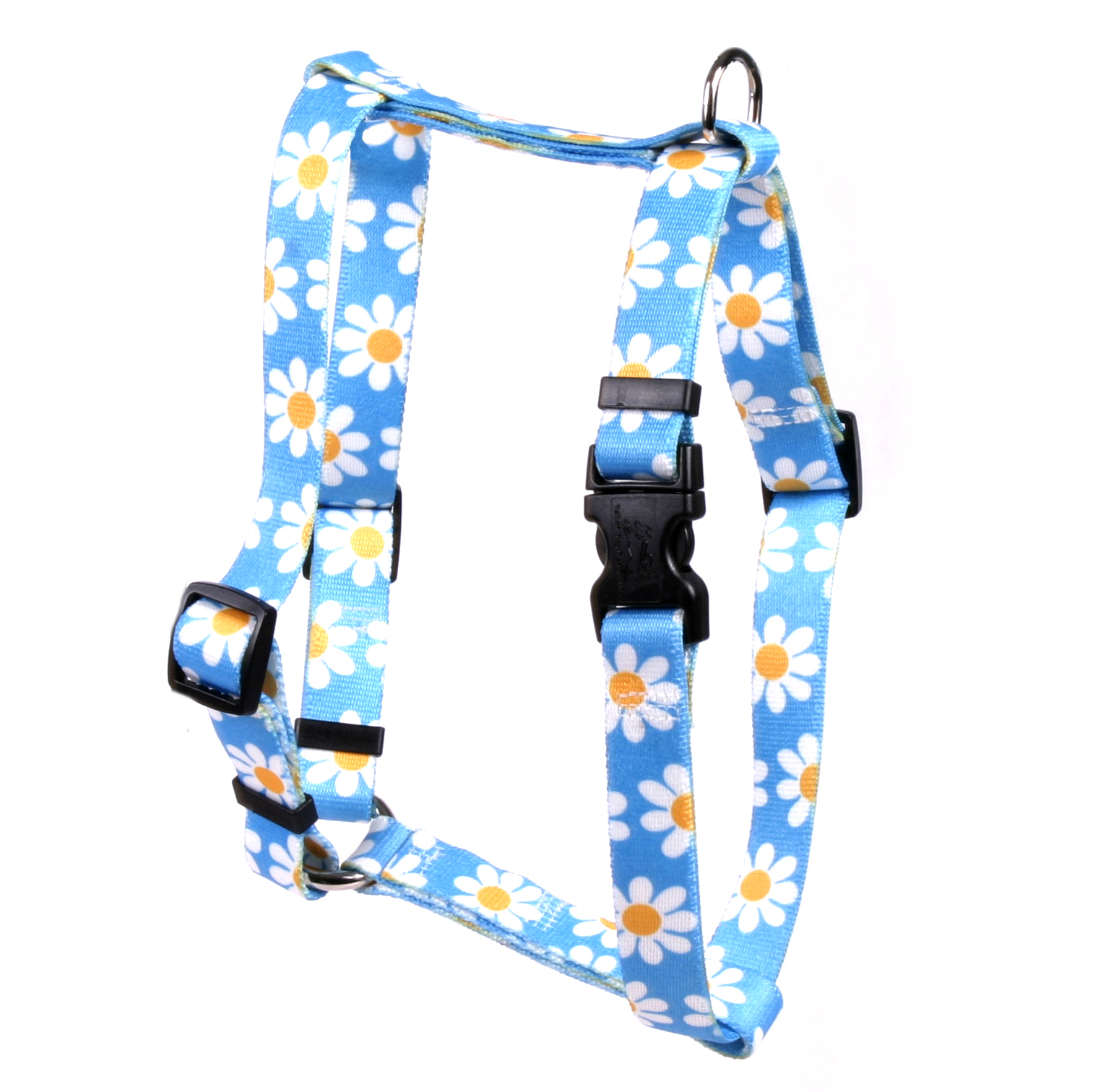 Blue Daisy Roman H Harness