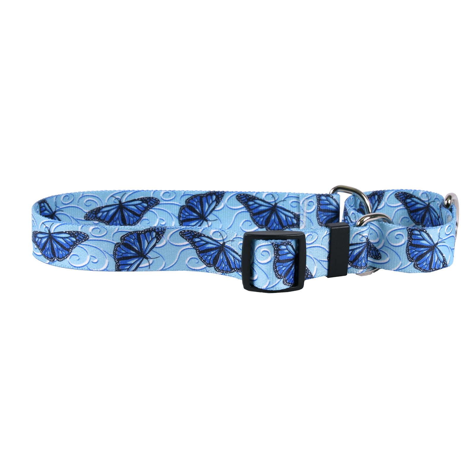 Blue Butterfly Swirl Martingale Collar