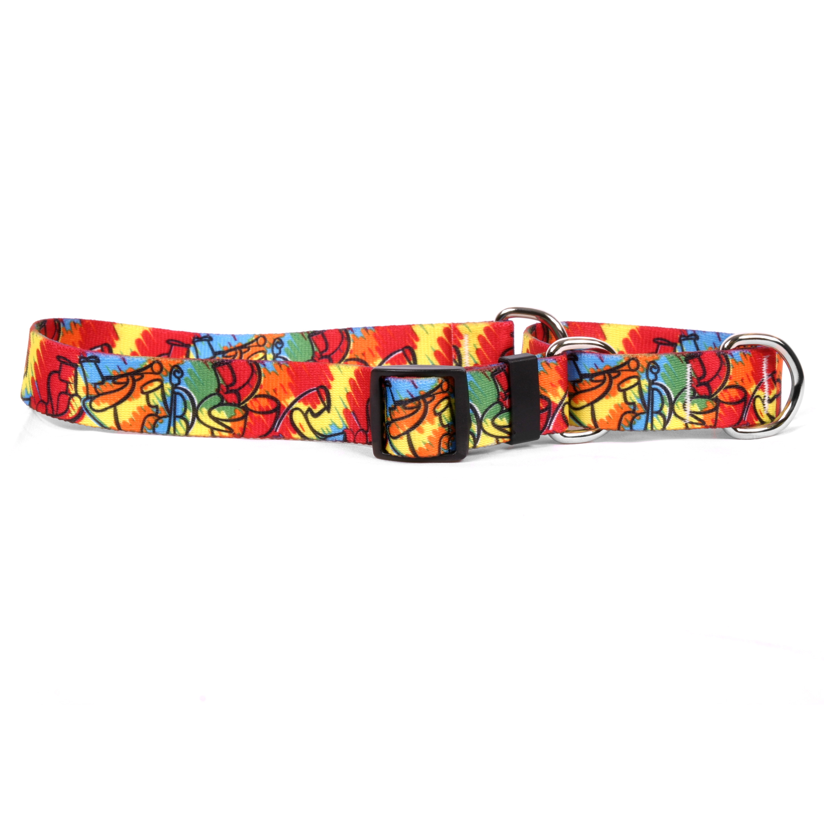 Jazz Paint Martingale Collar