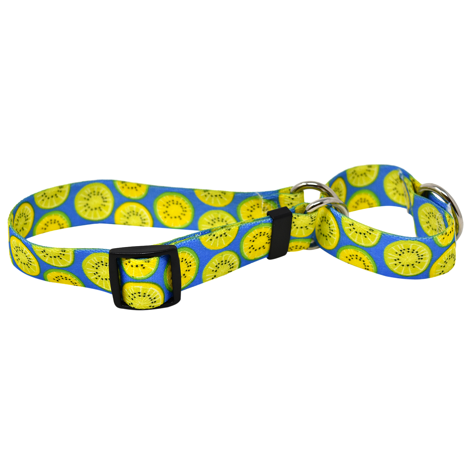 Lemon Lime Blue Martingale Collar