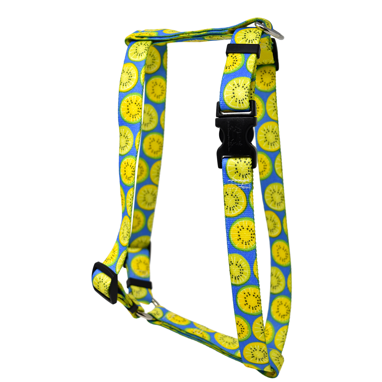 Lemon Lime Blue Roman H Harness