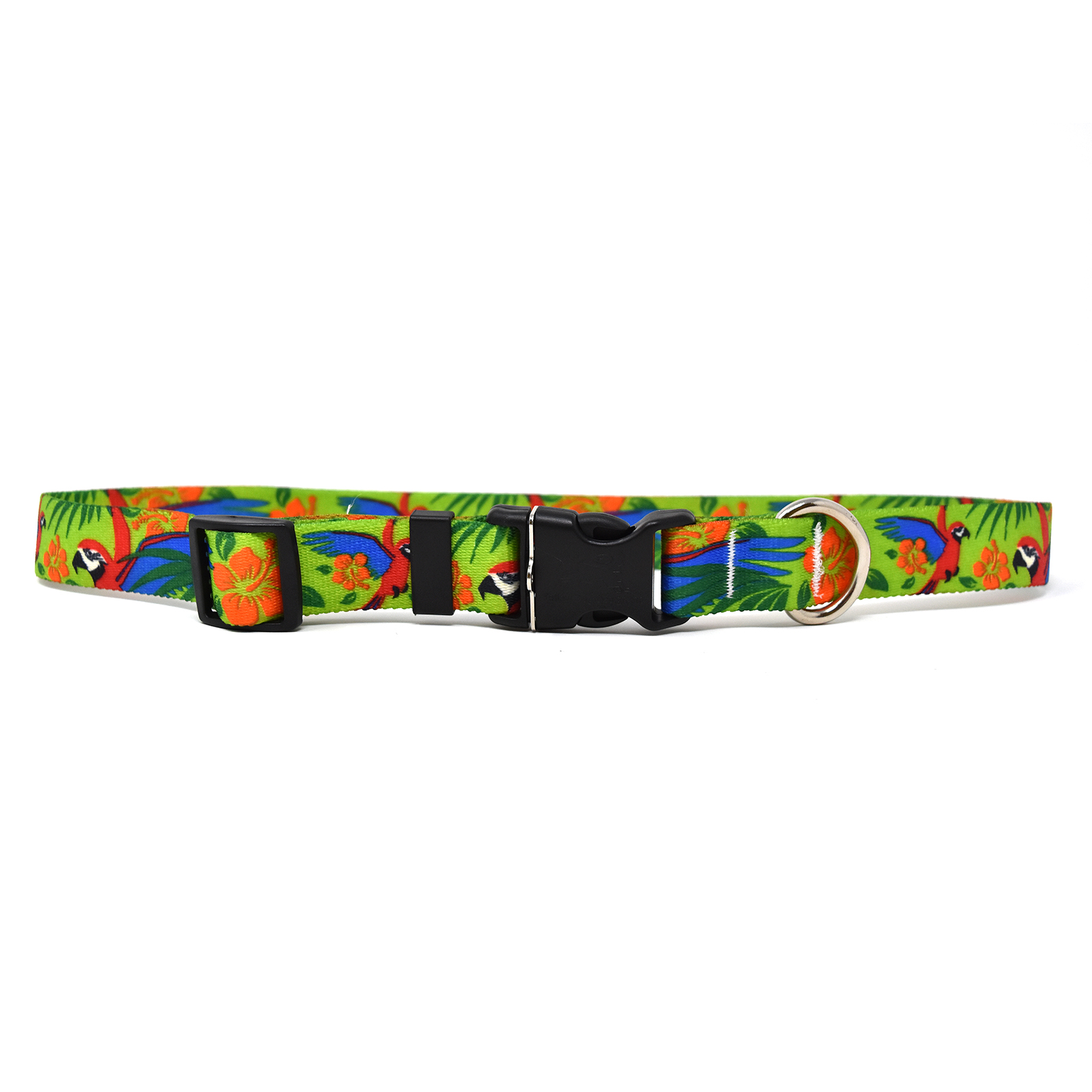 Macaw Red  Standard Collar