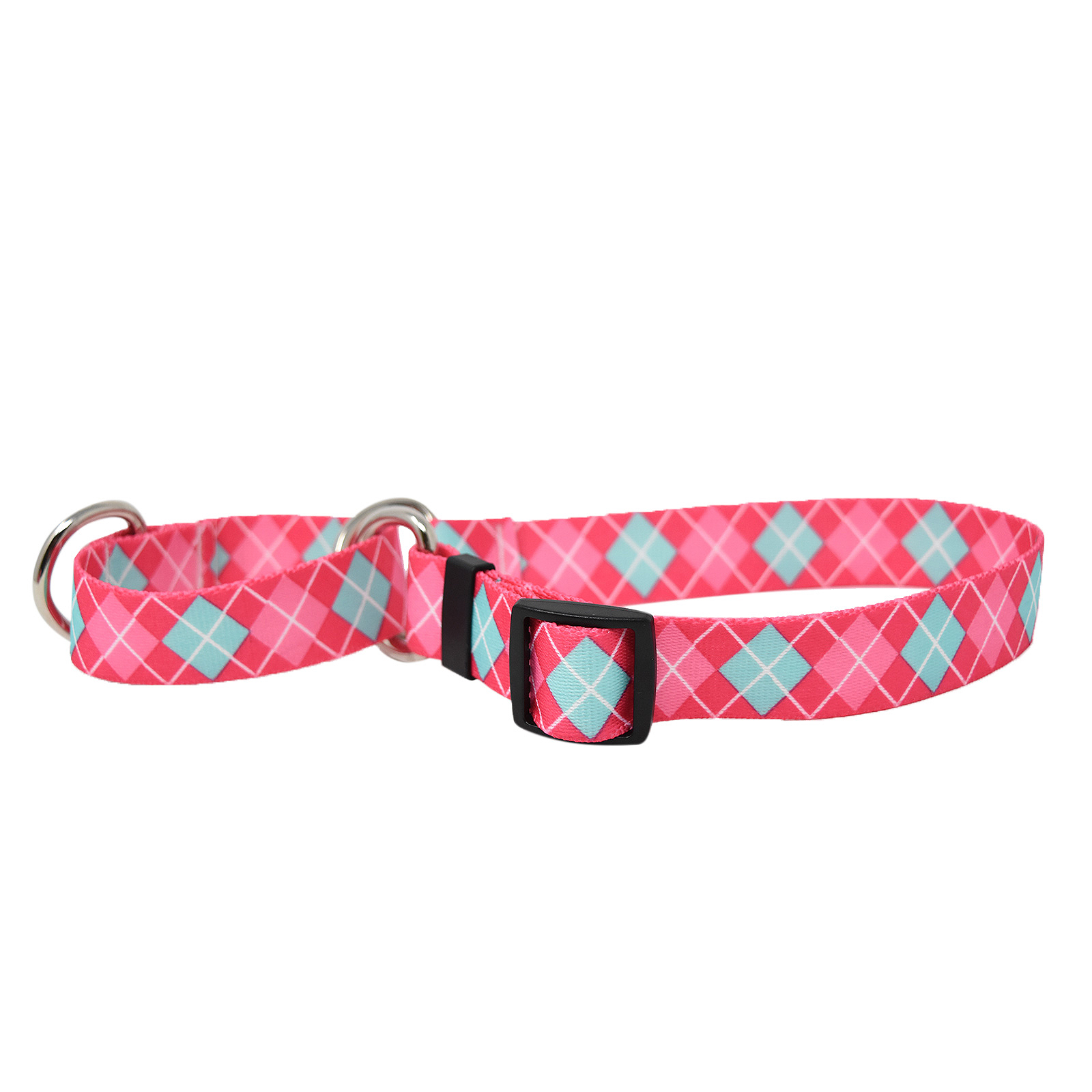 Magenta and Light Blue Argyle Martingale Collar