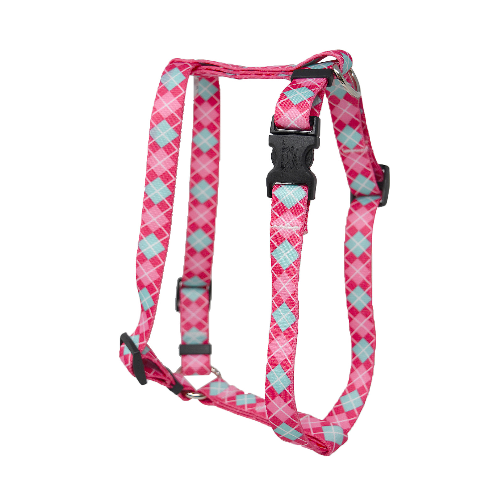Magenta and Light Blue Argyle Roman H Harness