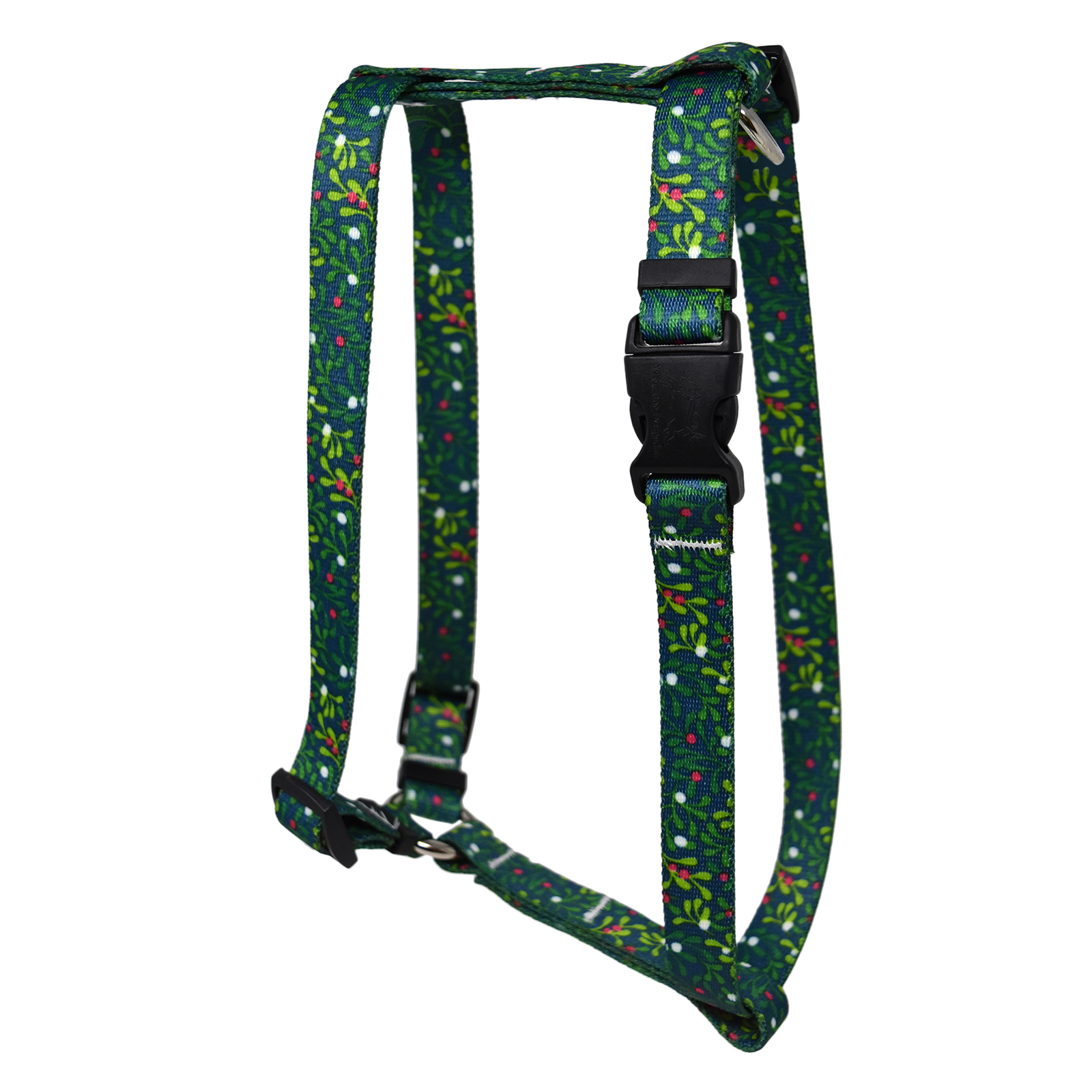 Mistletoe  Roman H Harness
