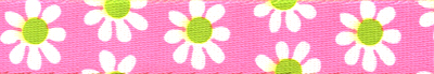 Pink & Green Daisy