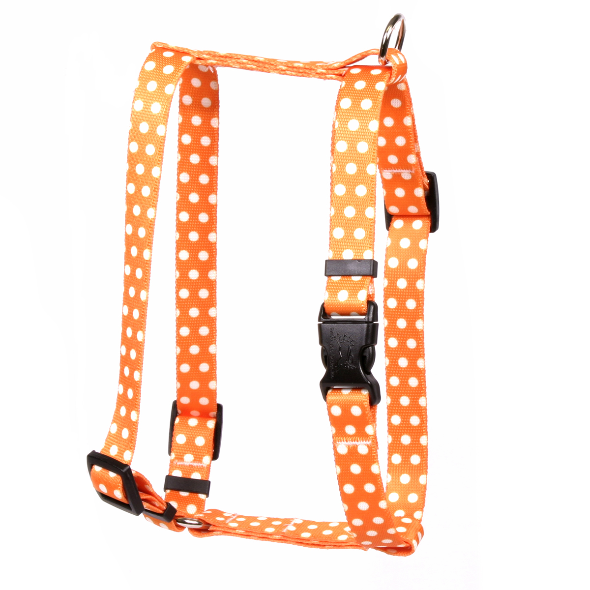 Orange Polka Dot Roman H Harness