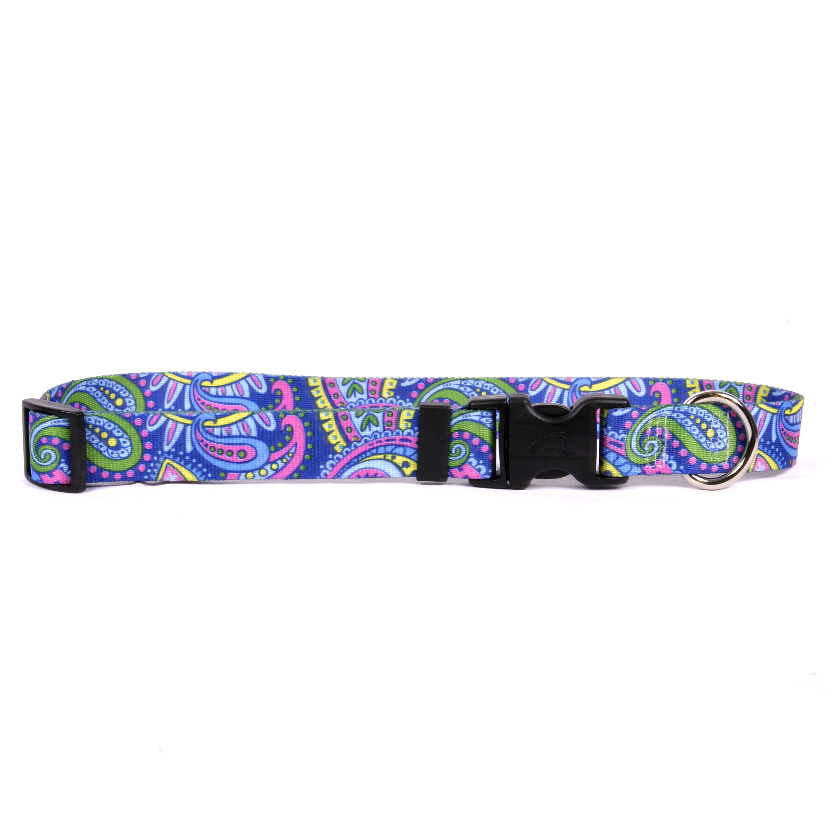 Paisley Power Standard Collar