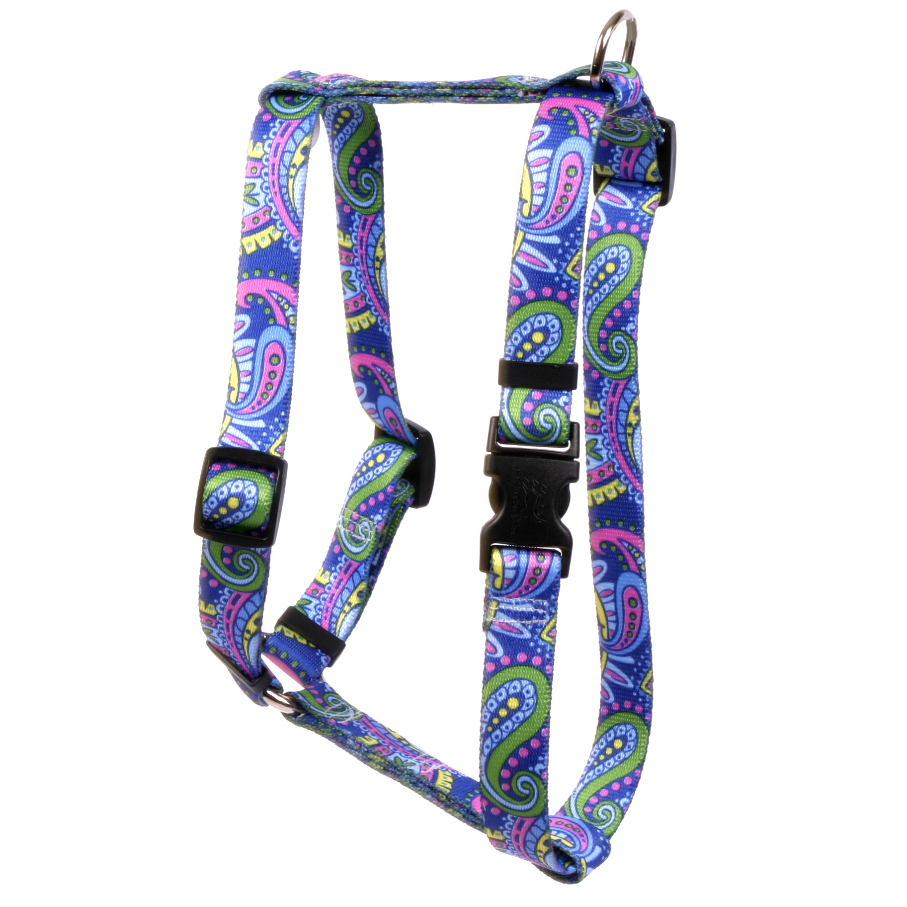Paisley Power Roman H Harness