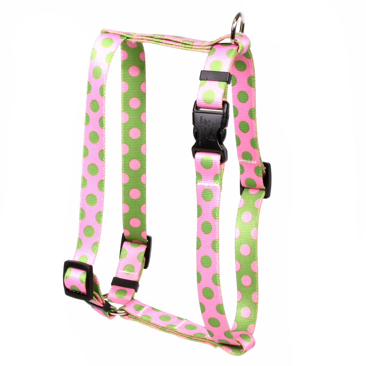 Pink and Green Polka Dot Roman H Harness
