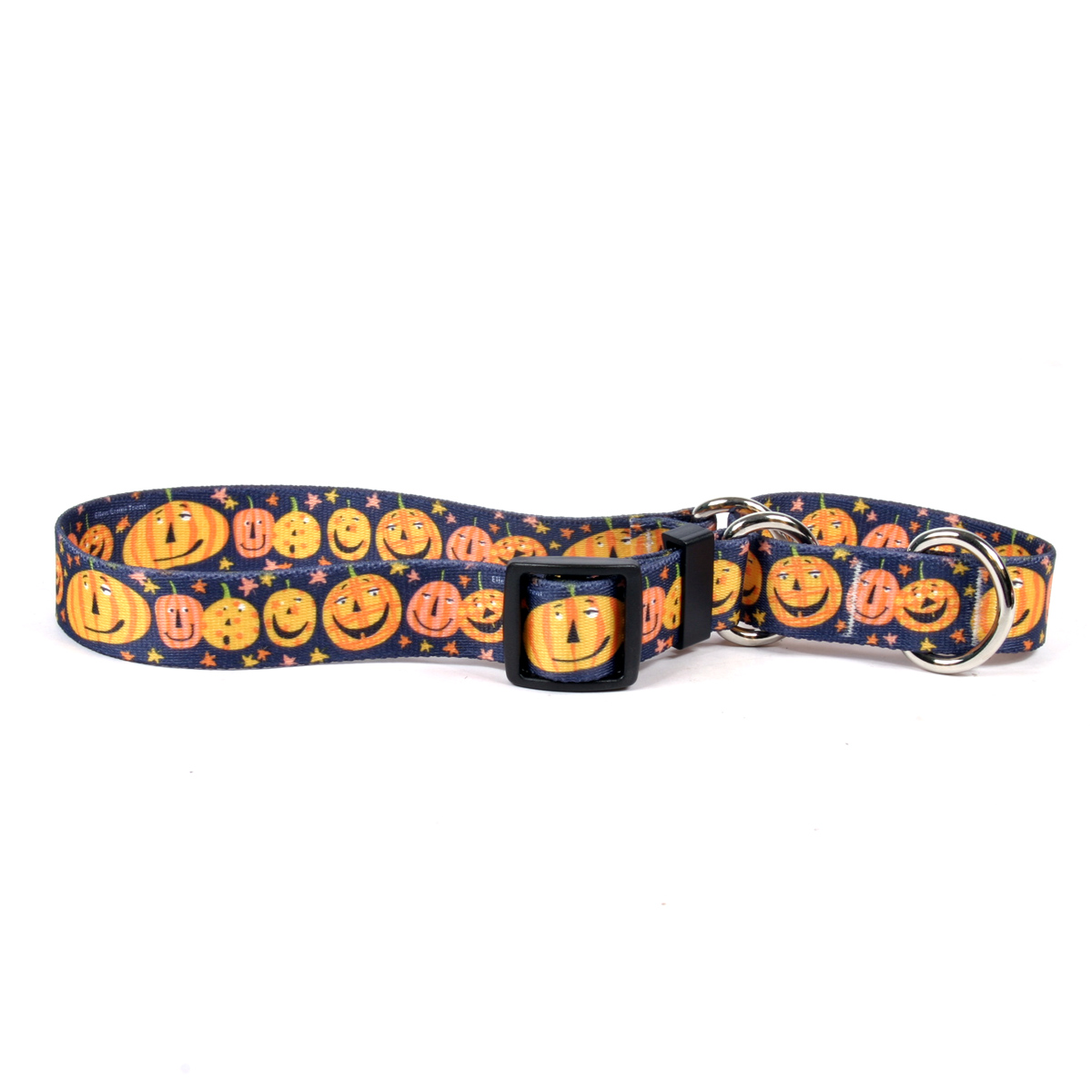 Pumpkin Party Martingale Collar