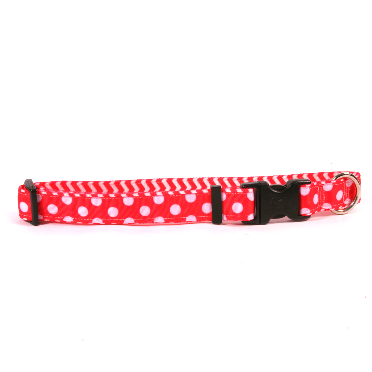 Strawberry Polka on Chevron Ribbon Collar