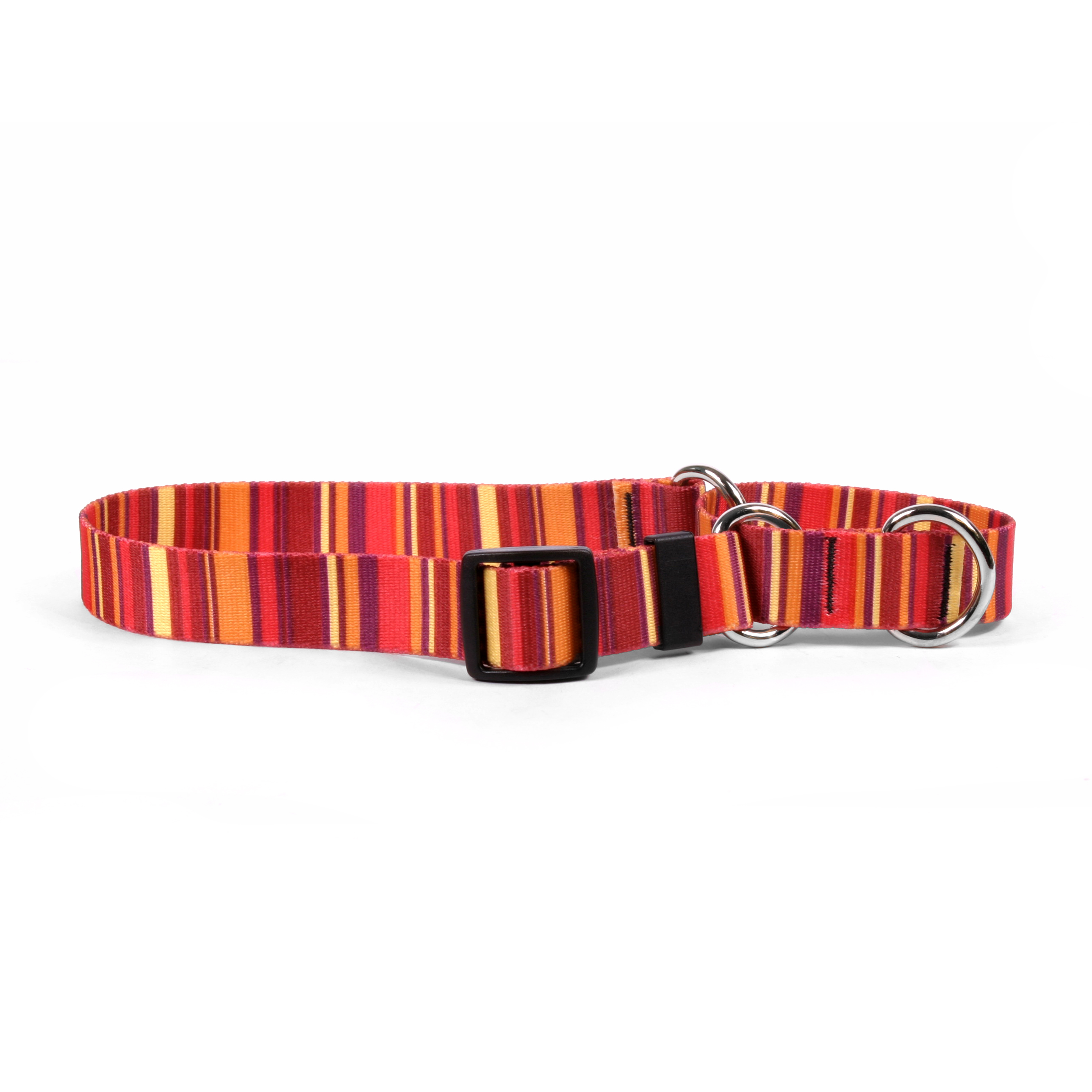 Sunset Stripes Martingale Collar