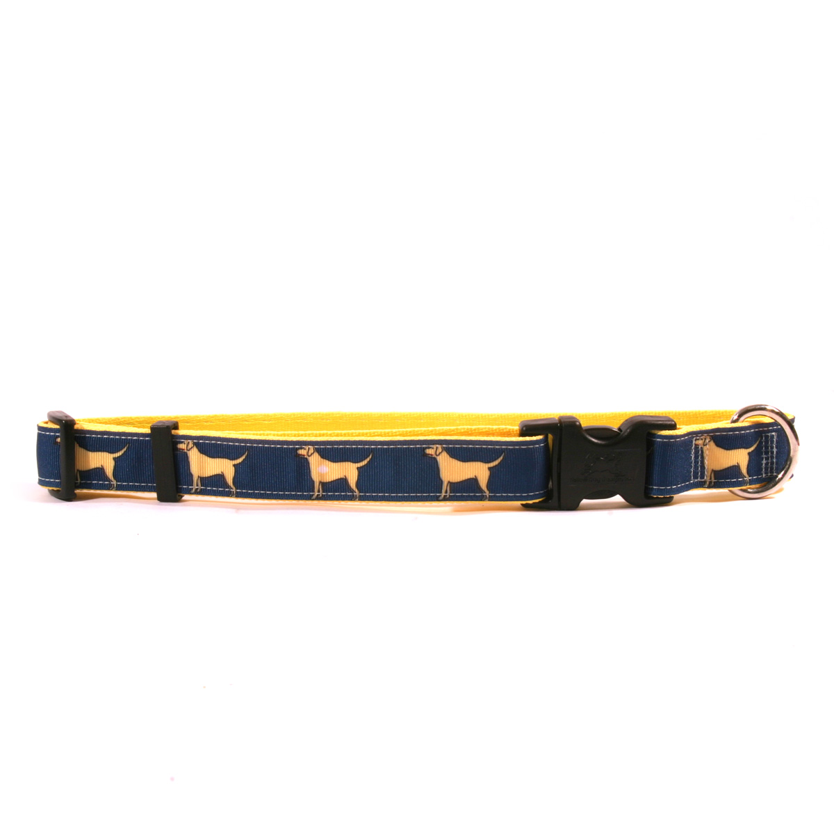 Yellow Lab on Yellow Ribbon Collar