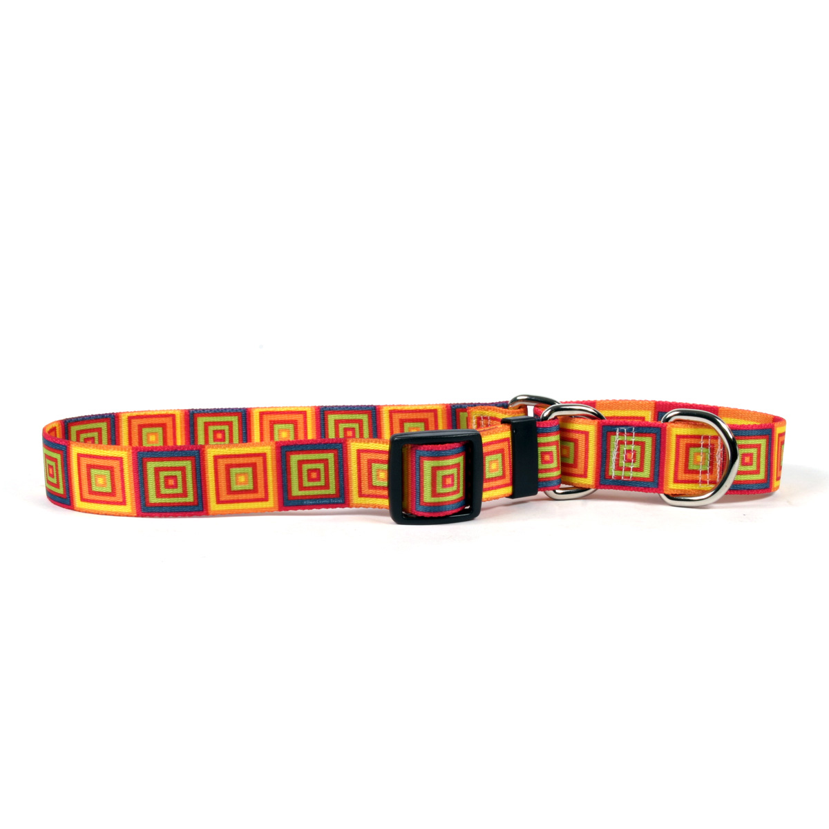 Orange Blocks Martingale Collar