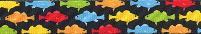 Rainbow Fish Black