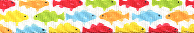 Rainbow Fish White
