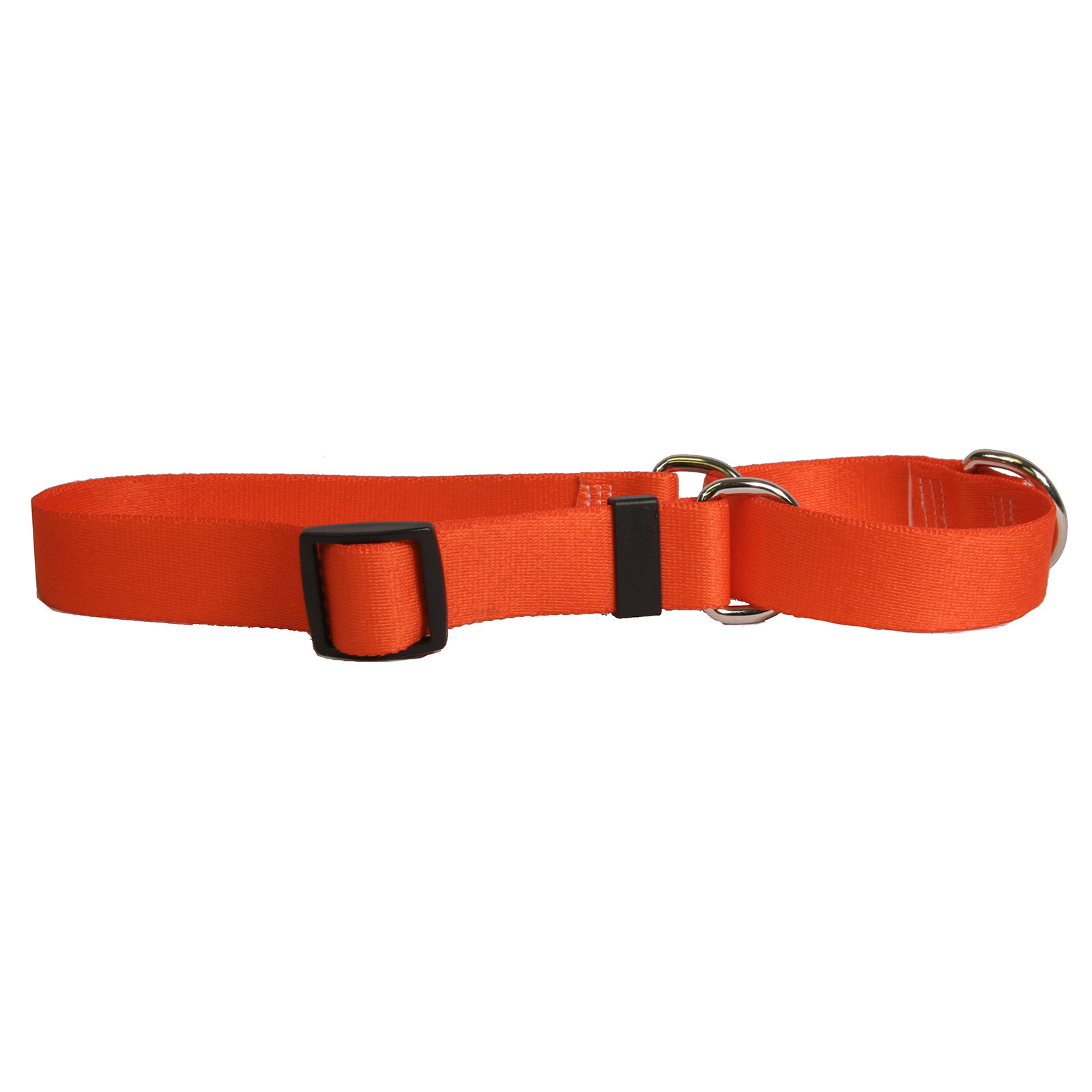 Solid Orange Martingale Collar