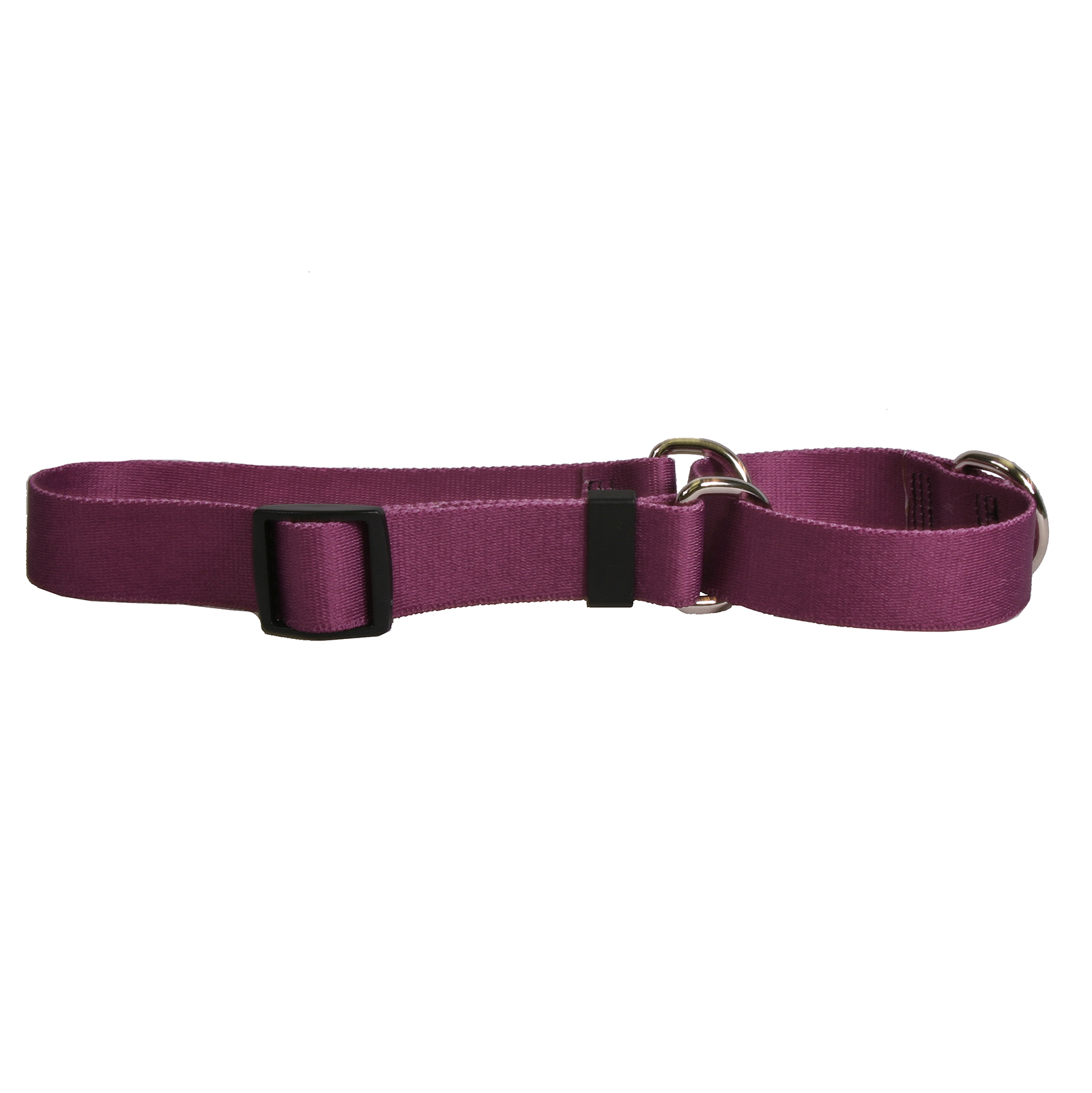 Solid Plum Standard Collar
