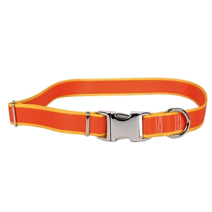 Sterling Stripes Collection Orange and Goldenrod Dog Collar