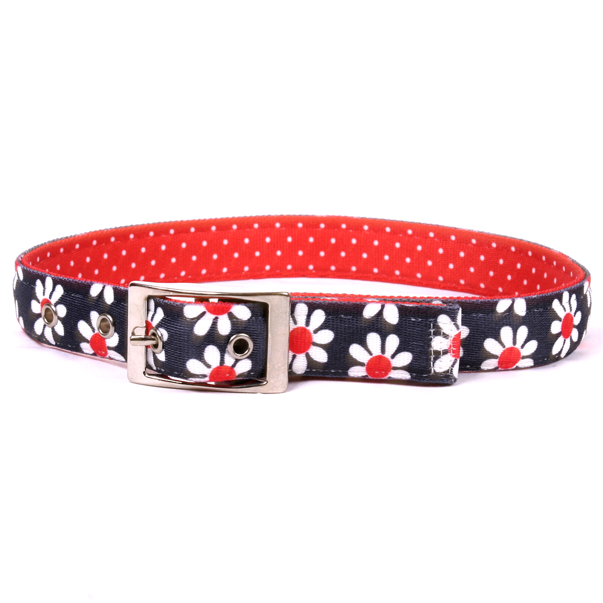 Black Daisy Uptown Collar