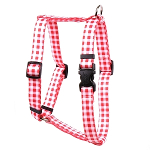 Gingham Red Roman H Harness