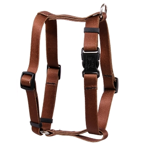 Solid Brown Roman H Harness