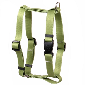Solid Olive Roman H Harness