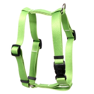 Solid Spring Green Roman H Harness