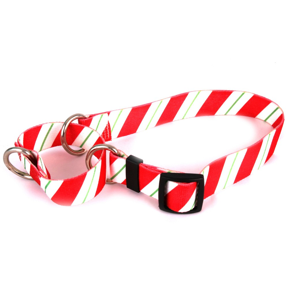 Peppermint Stick Martingale Collar
