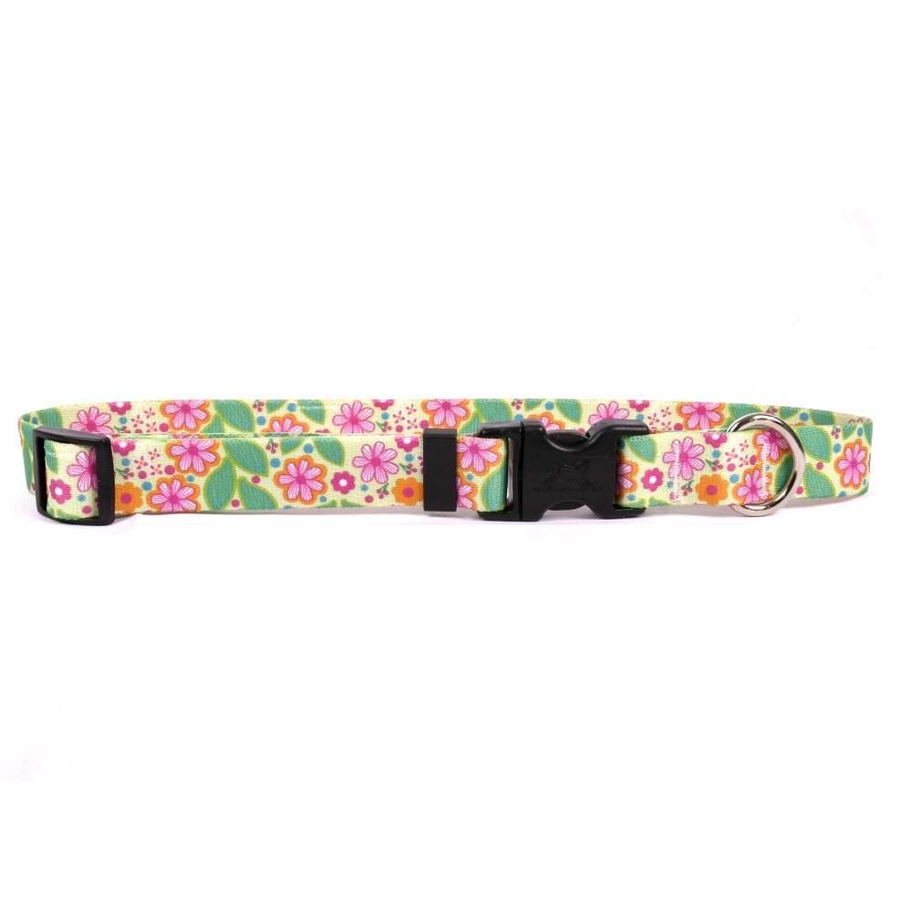 Flower Patch Standard Collar