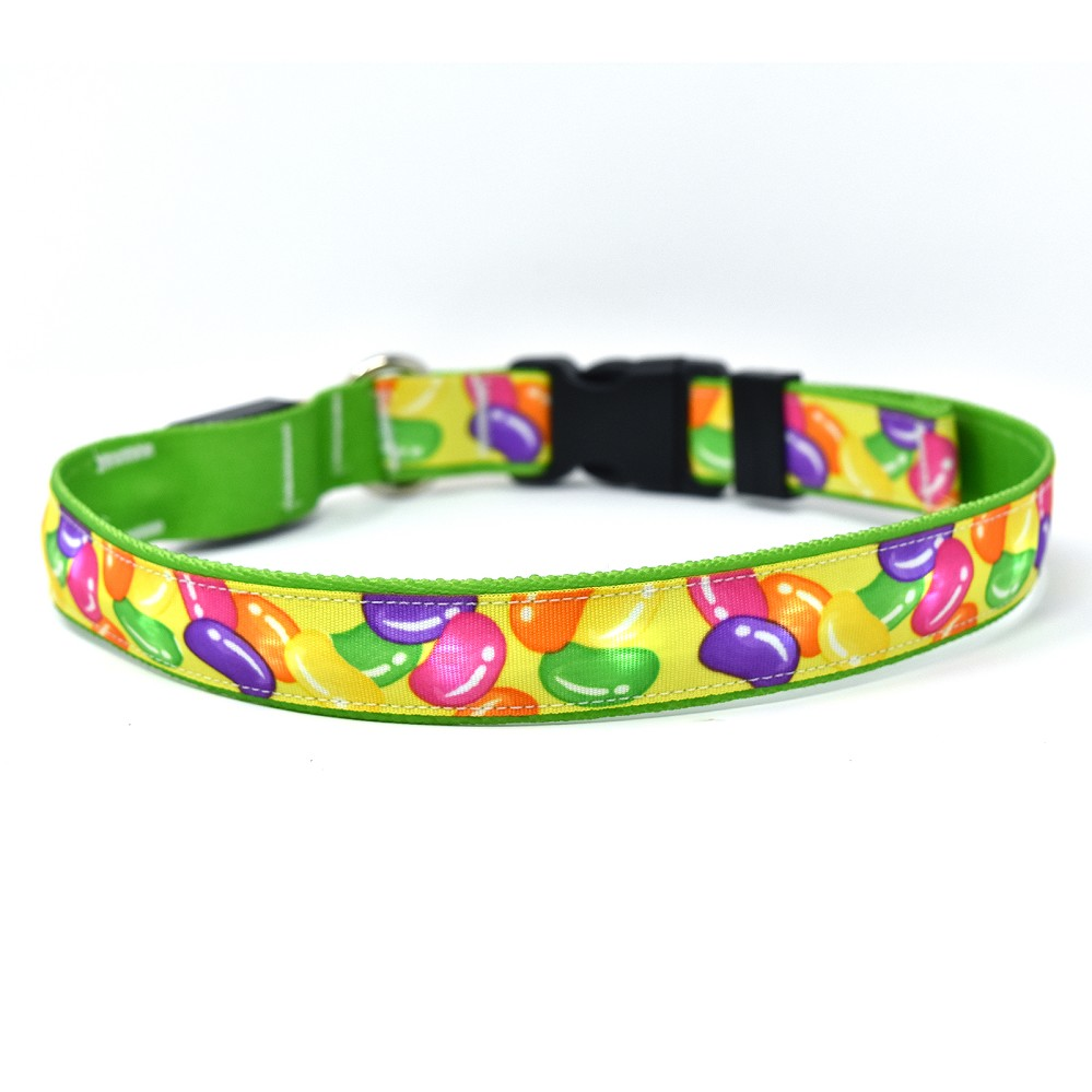 Jelly Beans ORION LED Dog Collar