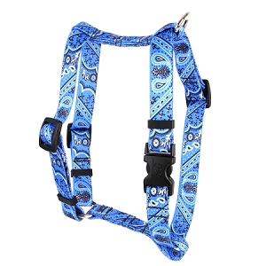 Bandana Blue Roman H Harness