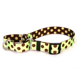 Green and Brown Polka Dot Martingale Collar